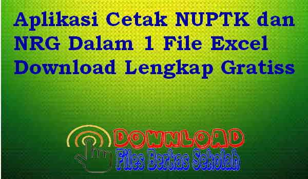 Download Aplikasi Cetak NUPTK dan NRG Dalam 1 File Excel Download Lengkap Gratiss