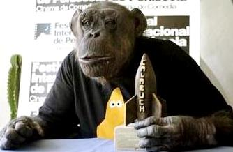 Foto del chimpacé Chita en conferencia