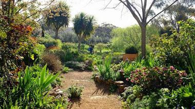 Sostenibilidad y jardinería. Guía del Jardín Sostenible
