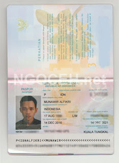 Paspor Fikri