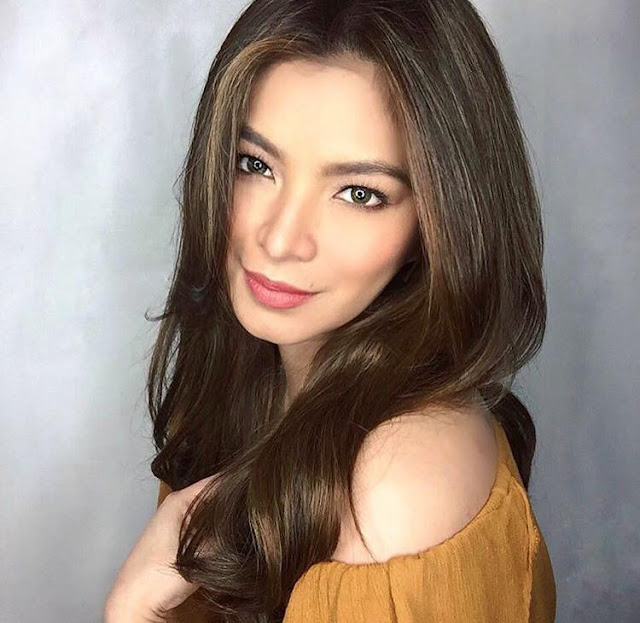 Before her Training, Angel Locsin Was First Given The Chance To Meet The Head Of Filipino Intelligence.