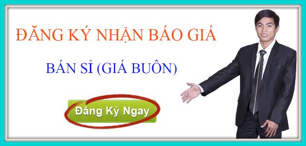 gia-BUOI-HO-LO-TAI-LOC-va-dua-hau-thoi-vang-ngay-tet
