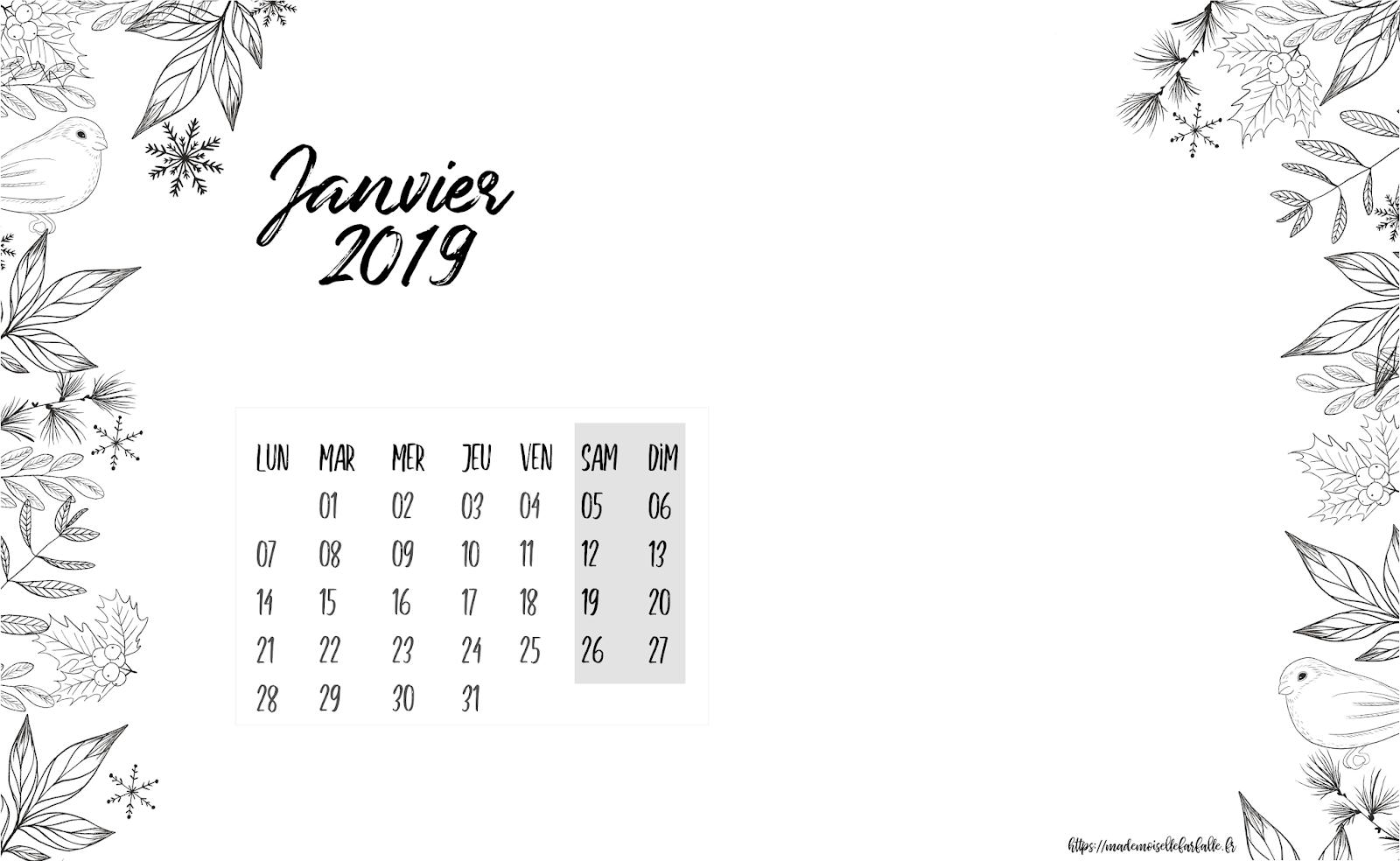 Calendrier Et Fonds D Ecran De Janvier 2019 A Telecharger Mademoiselle Farfalle