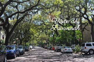 visiter Savannah