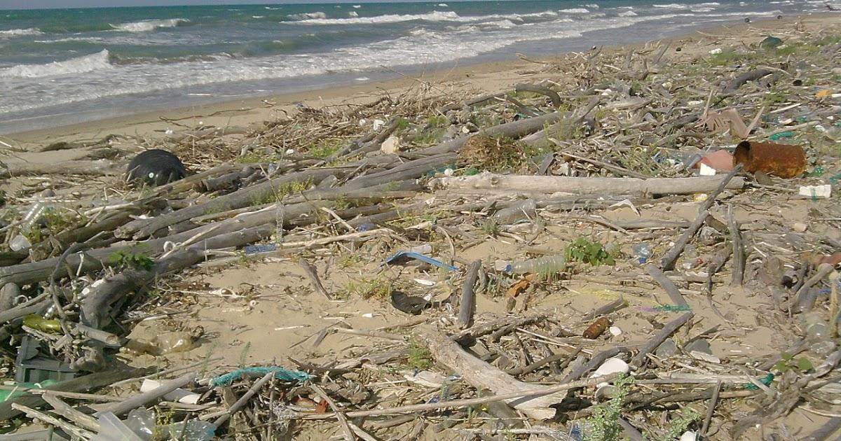 Istmo Schiapparo - Il blog di Torre Mileto: Lesina, un finanziamento per ripulire le spiagge ...