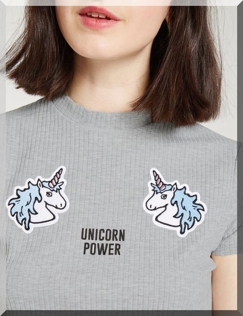 tee-shirt-gris-licorne