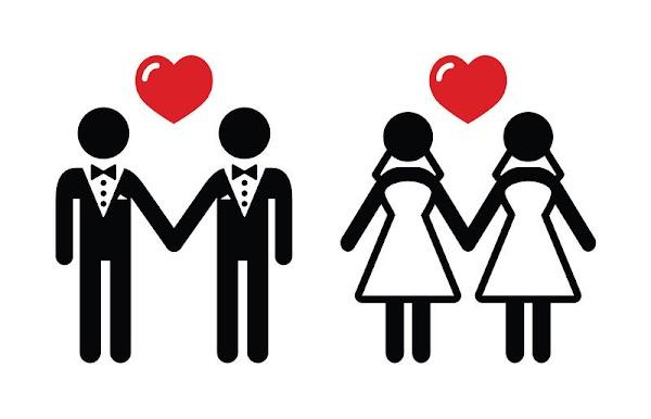 Despenalizar el aborto y legalizar el matrimonio igualitario en agenda de DDHH de la ANC