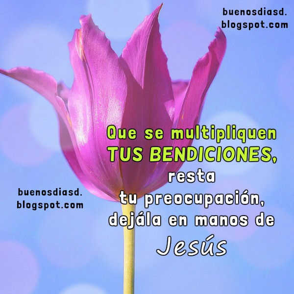 Mensajes de buenos días con imágenes bonitas, feliz inicio del día con frases e imágenes bonitas por Mery Bracho