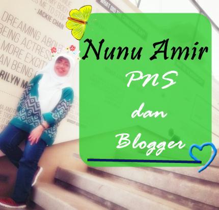 Nunu Amir PNS dan Blogger