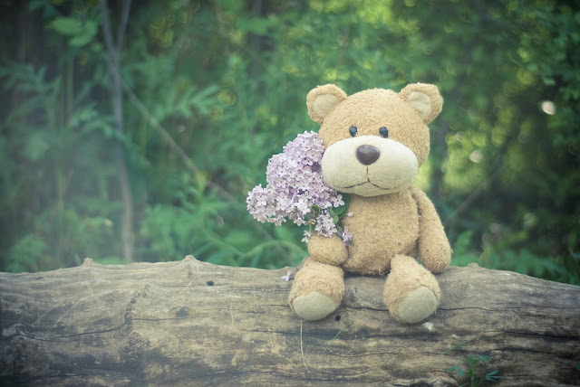 Brown Teddy Bear Holding Pink Flower Bouquet And Sit On Tree HD Wallpaper