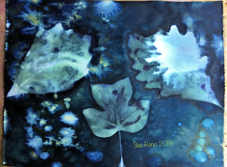 Wet cyanotype_Sue Reno_Image 458