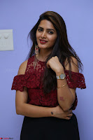 Pavani Gangireddy in Cute Black Skirt Maroon Top at 9 Movie Teaser Launch 5th May 2017  Exclusive 072.JPG