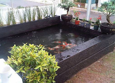 Contoh Foto Terbaru Desain Kolam Ikan Minimalis