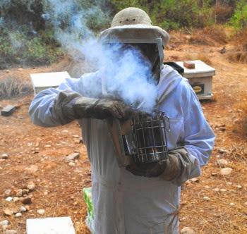 Το καπνιστήρι ο σύμμαχος του μελισσοκόμου χτες σήμερα αύριο