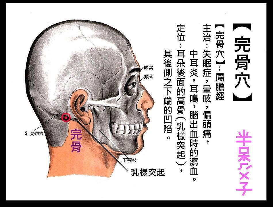 中醫針灸學: 完骨
