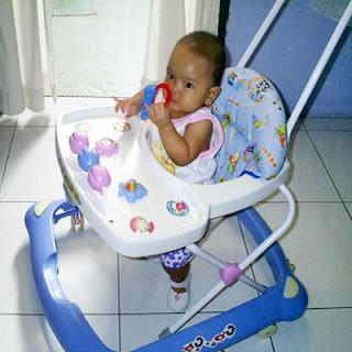 Grek bayi