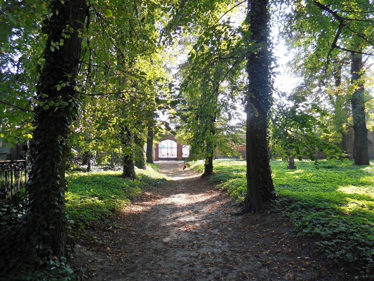 cmentarz we Wschowie