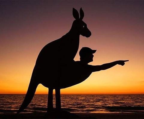 16-Tired-of-Uber-Get-a-Kangaroo-John-Marshall-Sunset-Selfie-Photographs-with-Cardboard-Cutouts-www-designstack-co