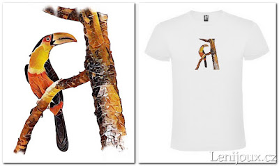 Tukan - pánské tričko s potiskem v geometrickém stylu