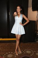 Shanvi Looks super cute in Small Mini Dress at IIFA Utsavam Awards press meet 27th March 2017 20.JPG