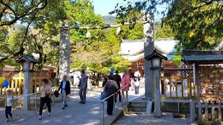人文研究見聞録:大麻比古神社 [徳島県]