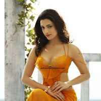Spicy Actress Photoshoot for Venkat Ram 2012 Calendar