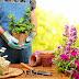 Πως η κηπουρική και το σφουγγάρισμα μπορούν να σας σώσουν τη ζωή. Τι αποκαλύπτει έρευνα επιστημόνων