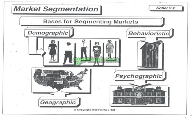 BASES FOR SEGMENTING MARKETS