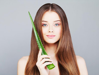 aloe vera hair growth