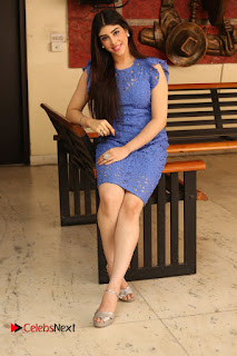 Actress Aditi Singh  Pictures in Short Dress at Movie Interview  0363.JPG