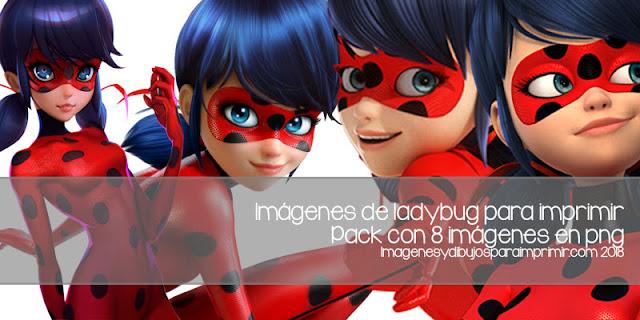 imágenes de ladybug para imprimir