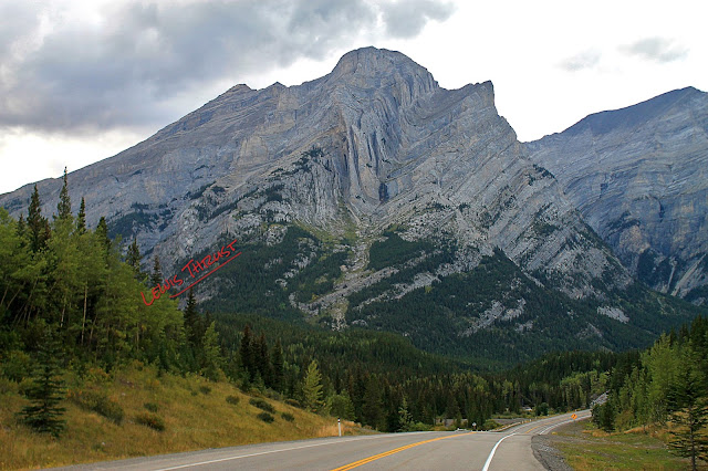 Kananaskis trail thrust belt fold aniticline syncline chevron