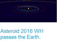 http://sciencythoughts.blogspot.co.uk/2016/11/asteroid-2016-wh-passes-earth.html