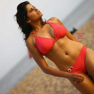 Indian bikini models beautiful photos