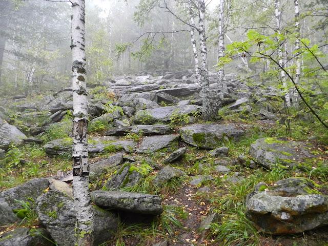 Туман окутал склон Двуглавой сопки