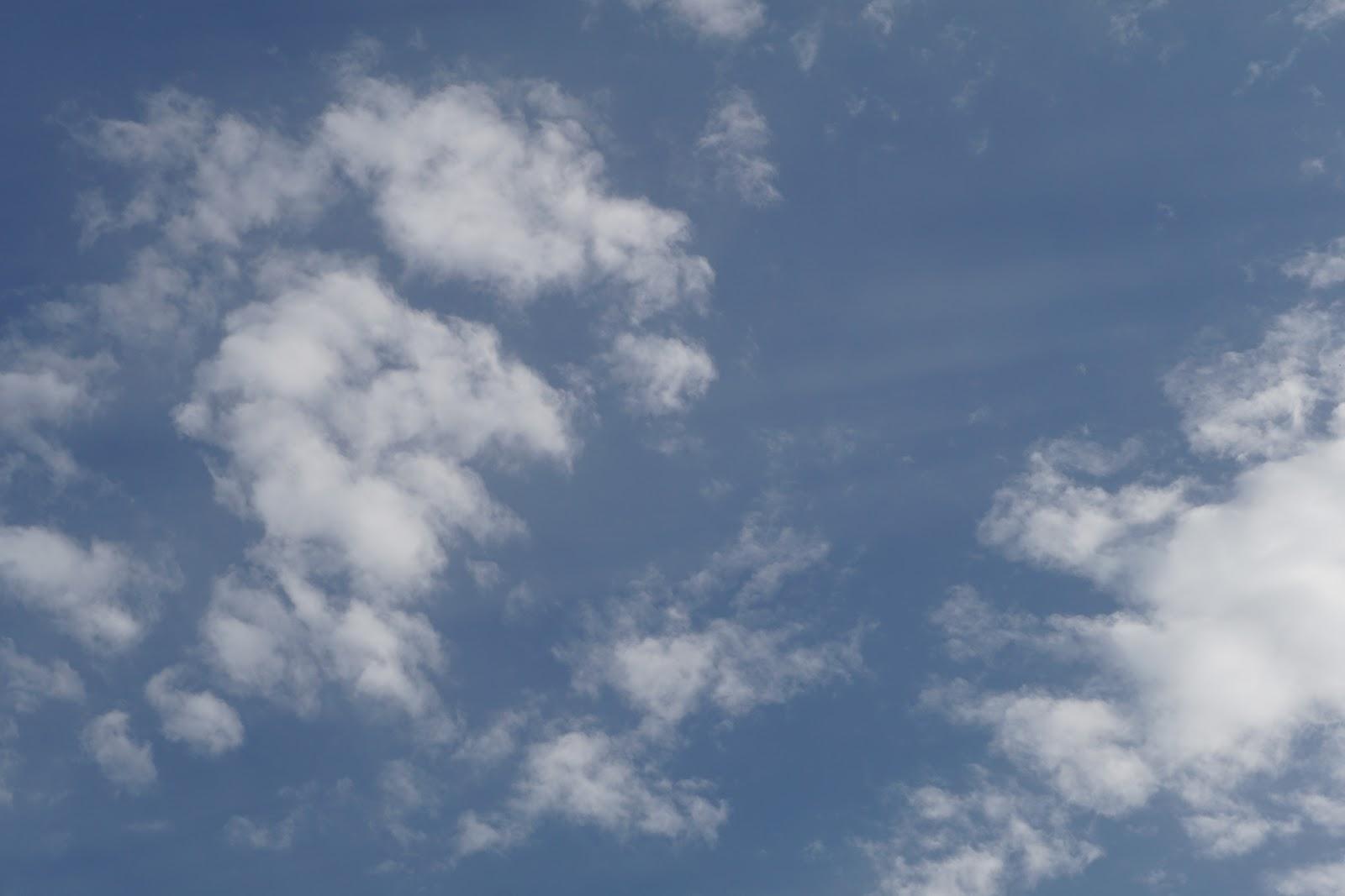 明るい空に柔らかな雲
