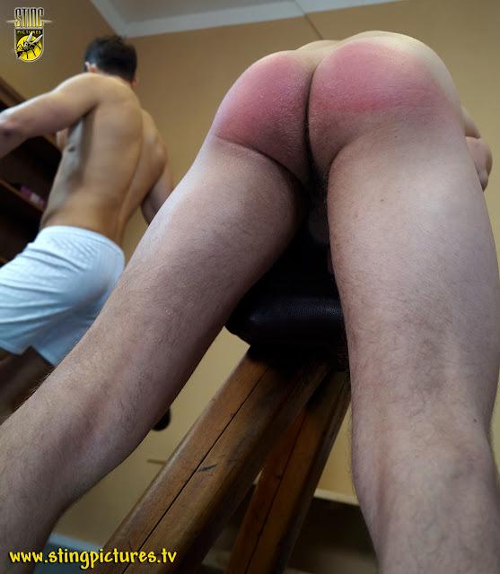 Femdom erotic prostate massage videos