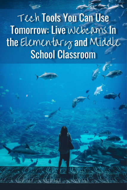 Quickly and easily transform your classroom with live webcams! Turn your elementary and middle school classroom into an aquarium, transport your students to the Space Station, and hang out with grizzly bears playing in the water. These are great to support informational text units! #informationaltext #techintheclassroom #livewebcams