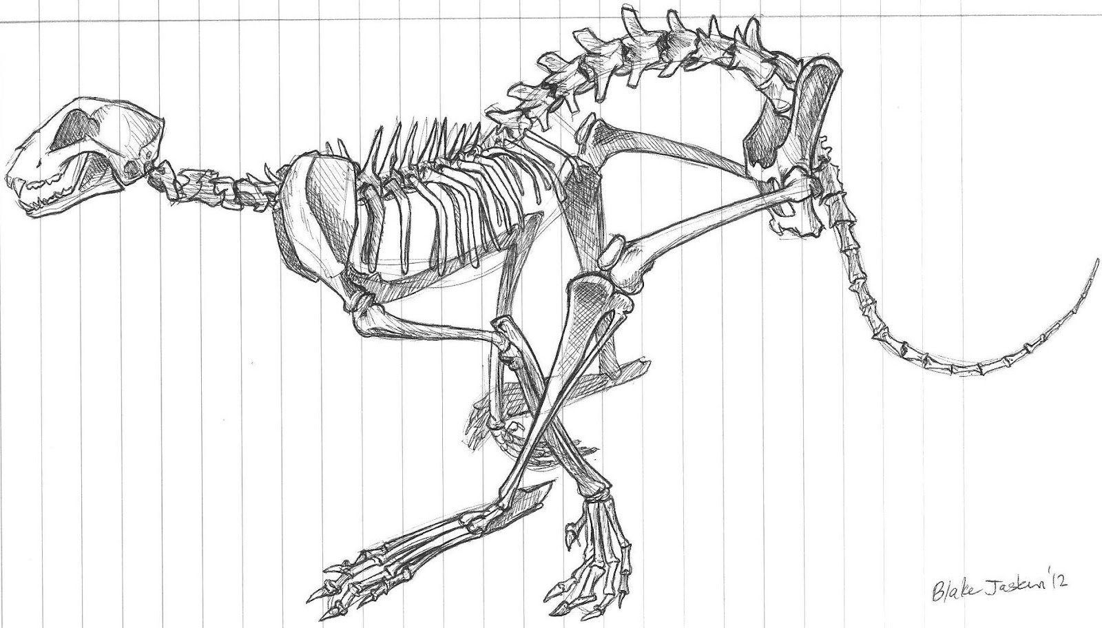 Blake J Cartoons Cheetah Skeleton Stu S