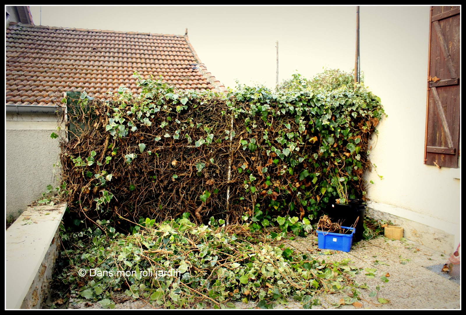 Brise Vue En Lierre le jardin de la champaille: un week-end au soleil