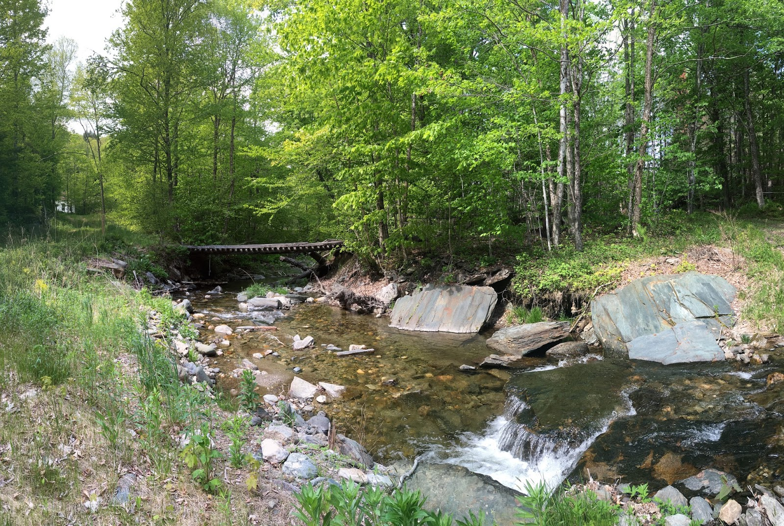 Trout stream day dreams may 2016 for Fly fishing massachusetts