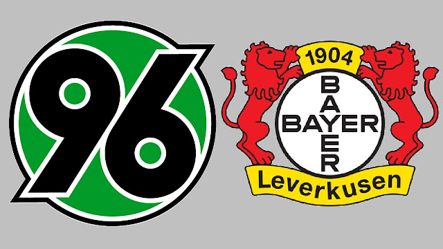 Hannover 96 vs Bayer Leverkusen Full Match & Highlights 17 December 2017