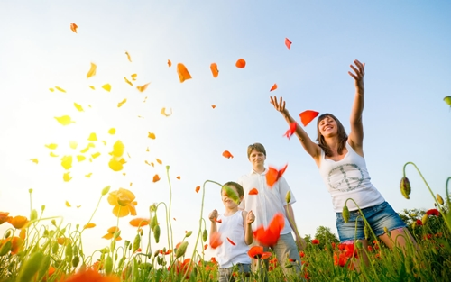 Những điều giản dị của hạnh phúc Happiness