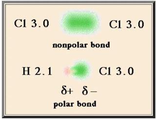 tahukah kamu senyawa polar dan non polar? berikut penjelasannya..