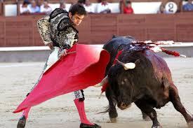 corridas de toros feria san marcos 2016