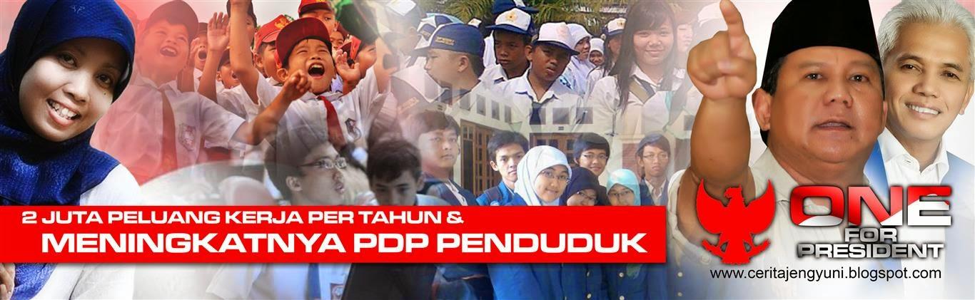 Indonesia Satu