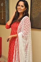 Anasuya Bharadwaj in Red at Kalamandir Foundation 7th anniversary Celebrations ~  Actress Galleries 051.JPG