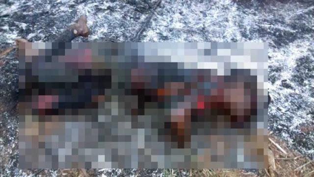 Mulher suspeita por furto é executada a pauladas, com tiro e carbonizada em Mogi-Guaçu (SP)