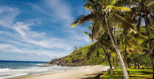 Vacances à a Réunion : plage , cocotiers