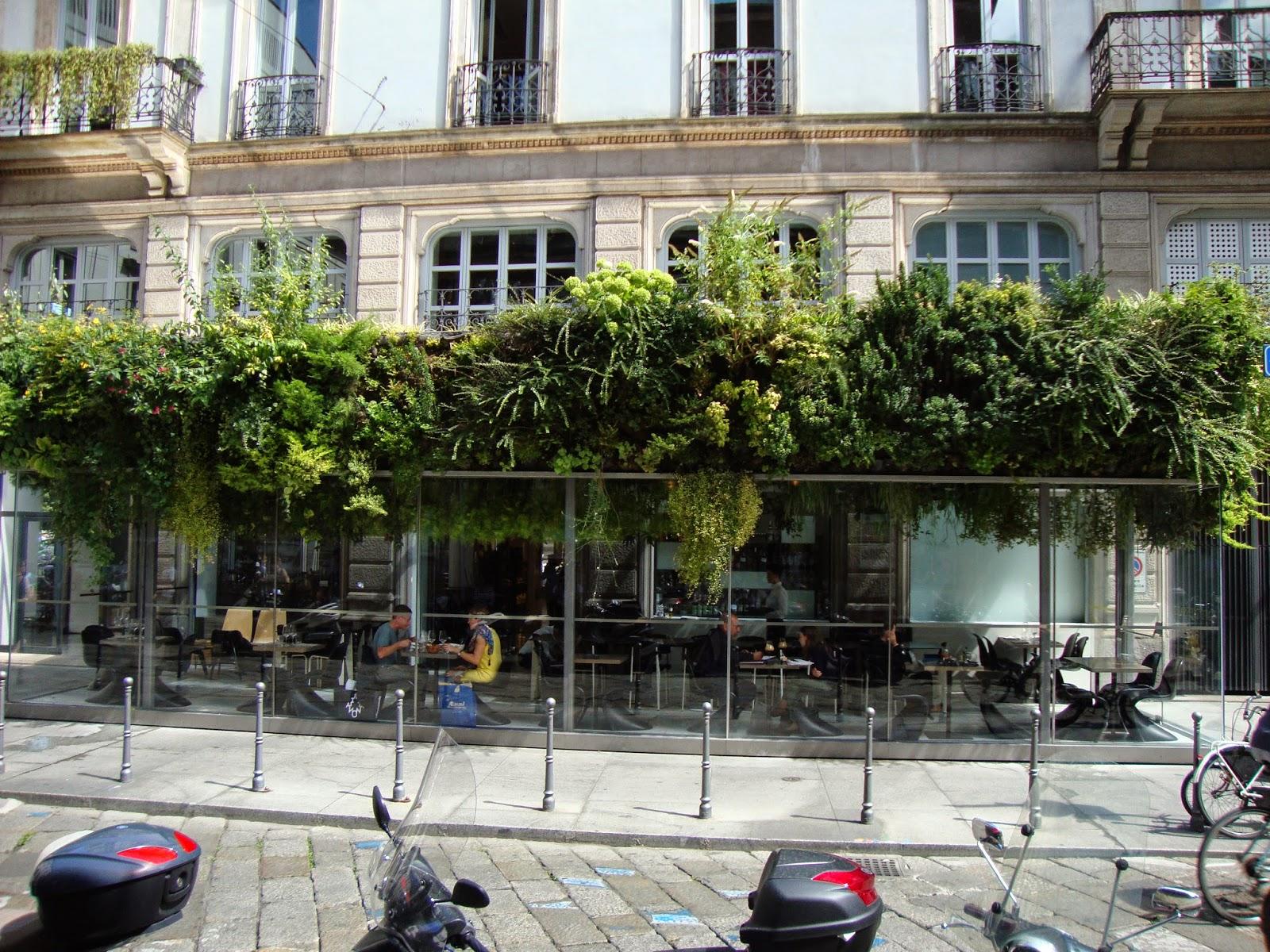 Giardino in verticale - Giardino verticale in casa ...